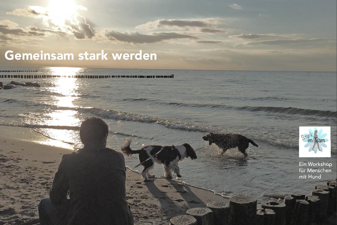 Tagesworkshop 'Stark im Team'.